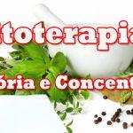 Fitoterapia – Memória e Concentração