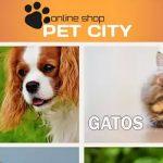 app pet city